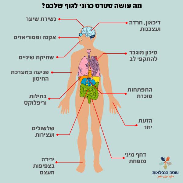 מה עושה סטרס כרוני לגוף שלכם?