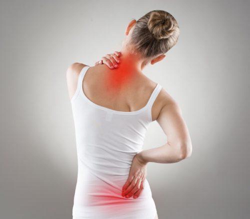 החוליה החזקה – שמירה על עמוד השדרה